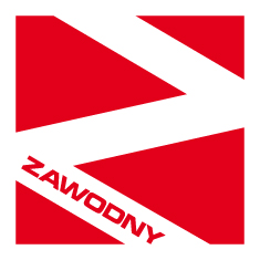Logo Zawodny - części samochodowe